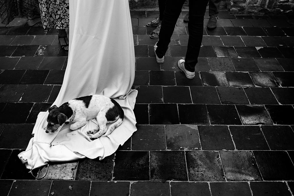 Arnaud Chapelle photographe mariage normandie manche (59)